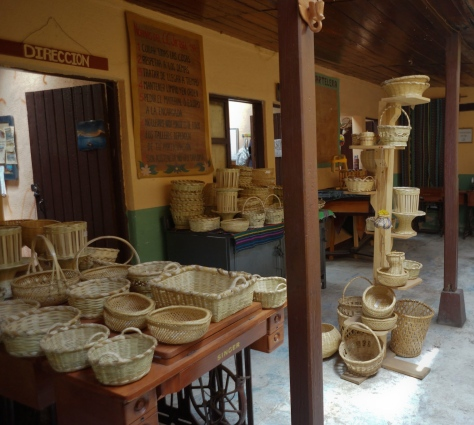 Learn to make baskets in palm leaf
